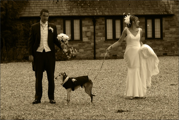 Wedding at Llansantfraed Court